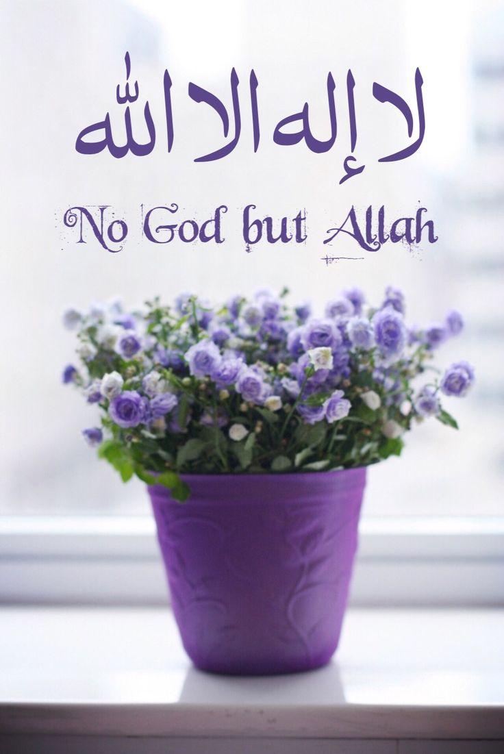 لا إله الا الله عن أبي هريرة رضي الله عنه قال : قال رسول الله صلى الله عليه و…