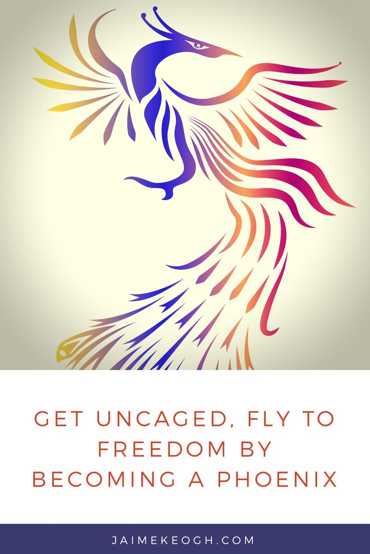 Get uncaged, fly to freedom by becoming a Phoenix