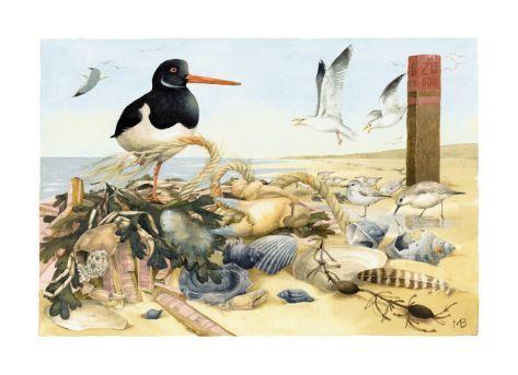 Prachtige strand illustratie van Marjolein Bastin.