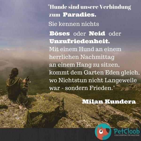 Milan Kundera Zitat - PetCloob                                                                                                                                                                                 Mehr #DogQuotes