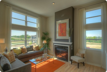 31 Best Orange And Green Living Room Images On Pinterest