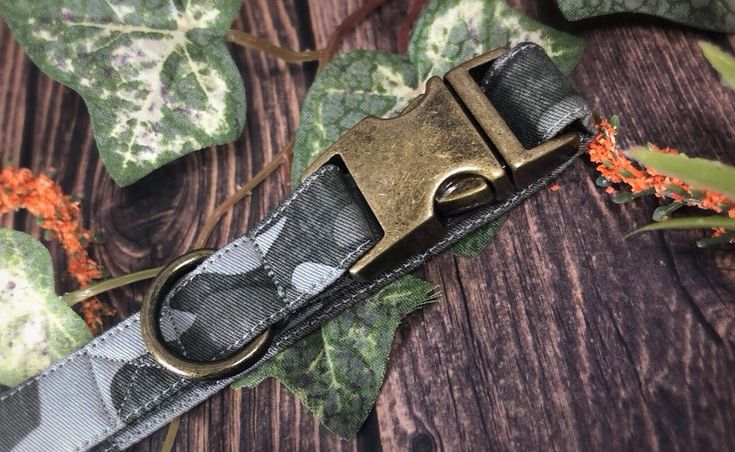 Frontier: Faded Camo Collar with Antique Brass hardware   – Pet Collars By KC North Designs