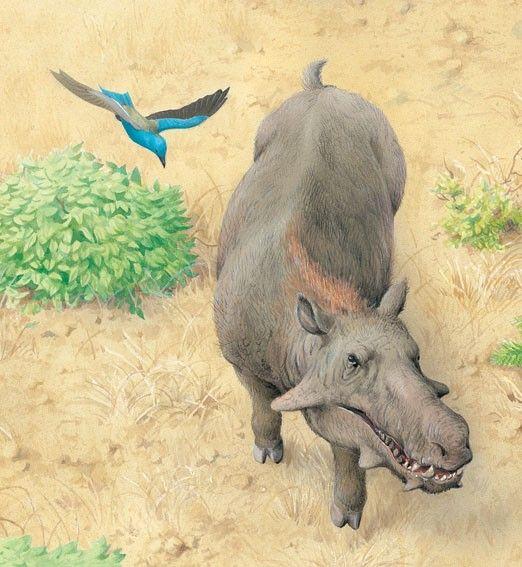 7 besten dinosauria chaoyangsaurus bilder auf pinterest