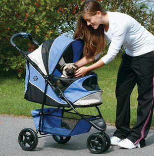 16 Reasons to Use a Dog Stroller