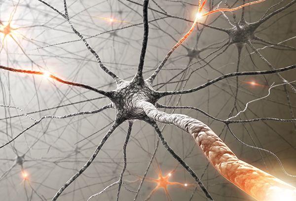 Cambiare la struttura neurale per modificare lo swing