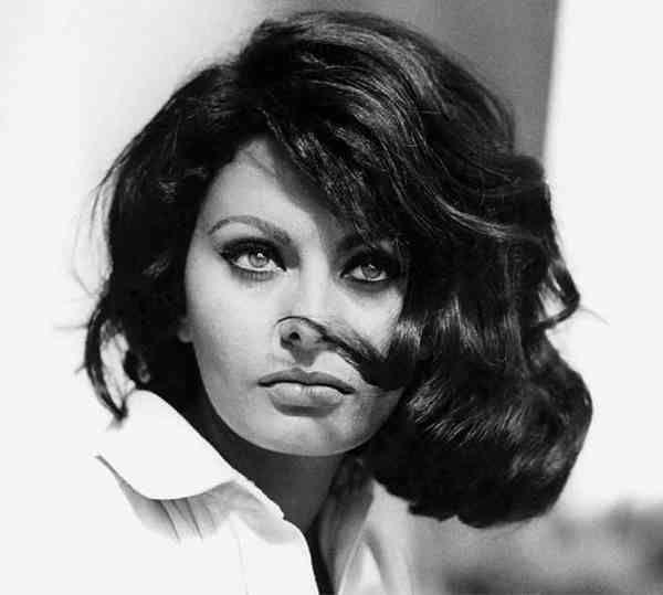 Beautiful Sophia Loren even with messy hair.  ♥ Check out my celebrity website! ♥ #celebritysizes #sophia #loren