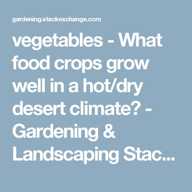 vegetables - What food crops grow well in a hot/dry desert climate? - Gardening & Landscaping Stack Exchange