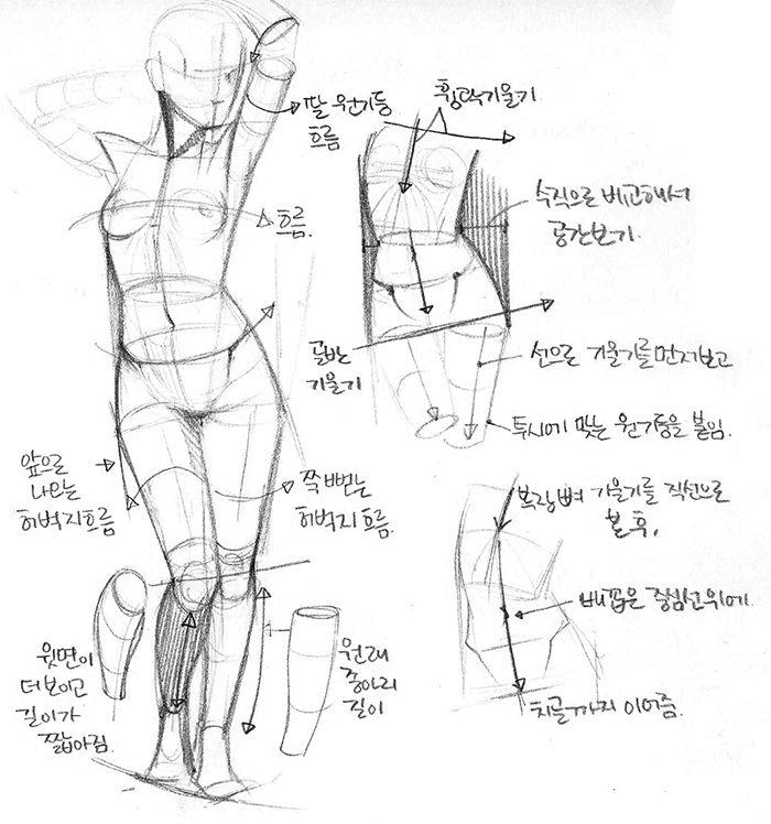 Figure Drawing Study: 인체드로잉과 해부학 과외를 합니다.