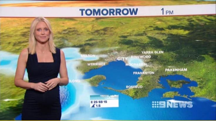 Livinia Nixon wearing the Ripe Harper Nursing Dress on Channel 9 News (Melbourne)