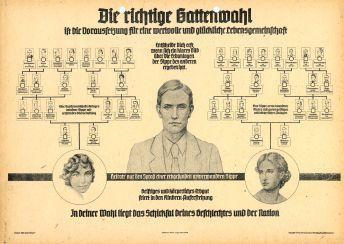 Bild: Rassekundliches Propagandamaterial von 1940, das vom Württembergischen Innenministerium zur »Förderung der Volksgesundheit« verbreitet wurde. Auch »Negermischlinge« wie Gert galten als Menschen mit weniger wertvollem Erbgut