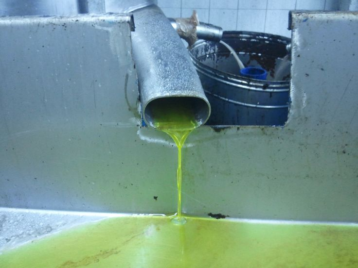 Olive oil as it passes from the filtration step