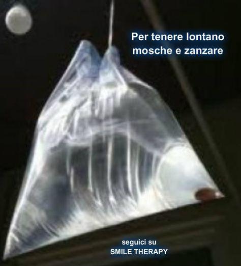 In Messico ed altri posti molto caldi del mondo si vedono spesso appesi al soffitto sacchetti di plastica trasparente pieni di acqua.  Q...