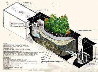 Le traitement des eaux usées selon Earthship | Sustainable Green Buildings - Sewage Treatment, Containment and Distribution - earthship.com