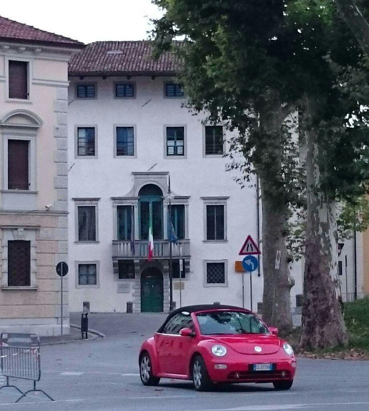 Palazzo Otellio... conservatorio Tomadini