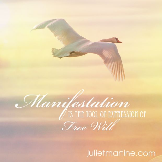 Manifestation is the tool of expression of Free Will.  #ManifestationIntelligence