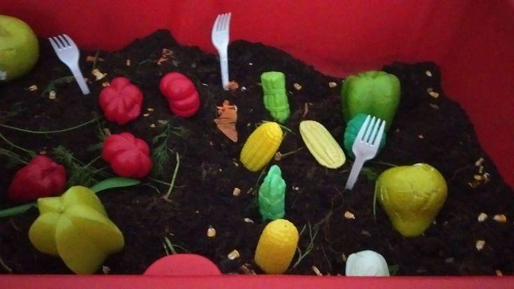 Soils and Vegetables for autumn gardening @AcornsNursery