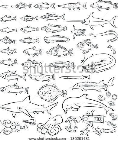 vector illustration of  sea fishes and creatures collection in black and white