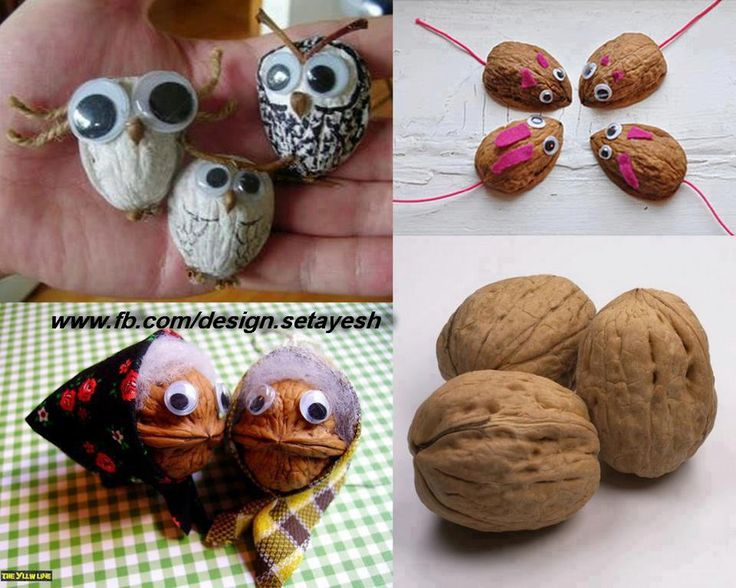 walnoot beestjes / Walnut critters