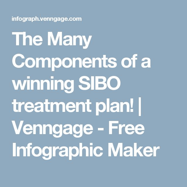 The Many Components of a winning SIBO treatment plan! | Venngage - Free Infographic Maker