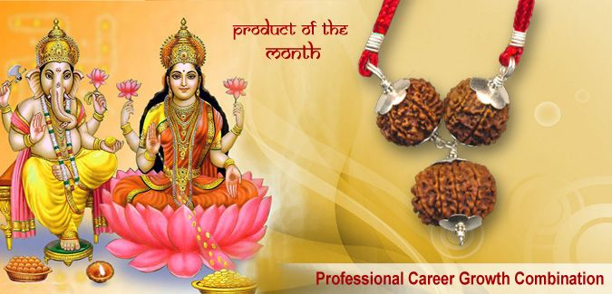 PRODUCT OF THE MONTH  PROFESSIONAL CAREER GROWTH COMBINATION  This combination is beneficial for people who are starting their career or are in their initial stages of their professional lives. It opens new opportunities, gives success and growth. Its wearer is blessed by Devi Laxmi and Ganeshji.  The combination is prepared using two beads of 7 mukhi and one bead of 8 mukhi Rudraksha.