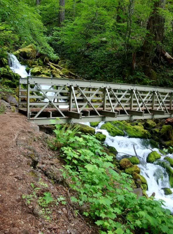 Hiking in the Gifford Pinchot National Forest, Washington State