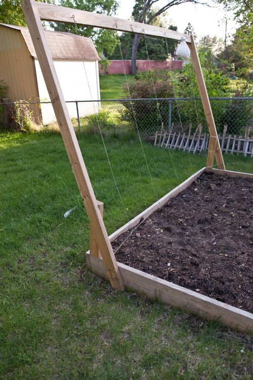 tomato trellis DIY http://mylistoflists.com/22-tips-for-growing-tomatoes/