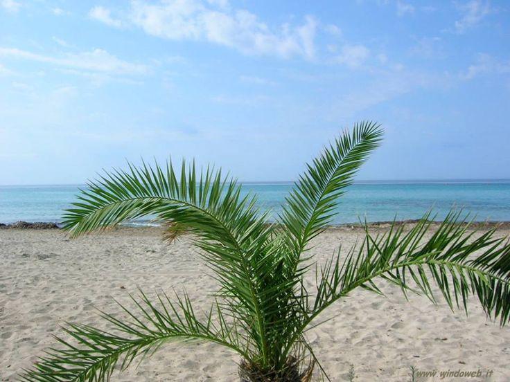 #dovesiva    Mazara Del Vallo, è tranquillo, bel mare, ottimi ristoranti e un centro storico arabo da visitare. Inoltre la provincia di Trapani è tra le più economiche.  Buon Viaggio
