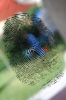 Set design: Using free images online of fingerprints and footprints. She printed them on repositionable CLEAR DECALS FOR WINDOWS – terrific idea!