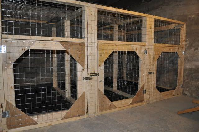 Best 25 indoor dog rooms ideas on pinterest indoor dog for Big indoor dog kennels