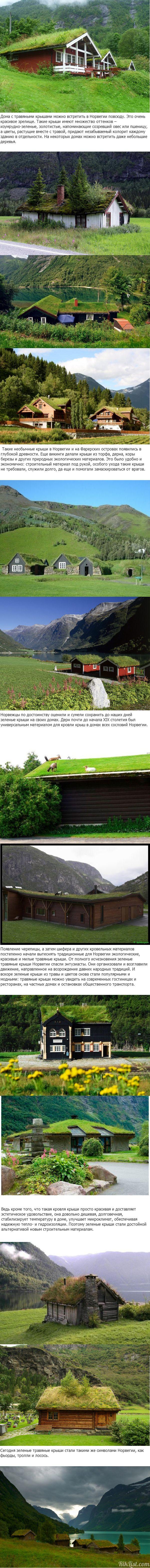 Зеленые крыши Норвегии