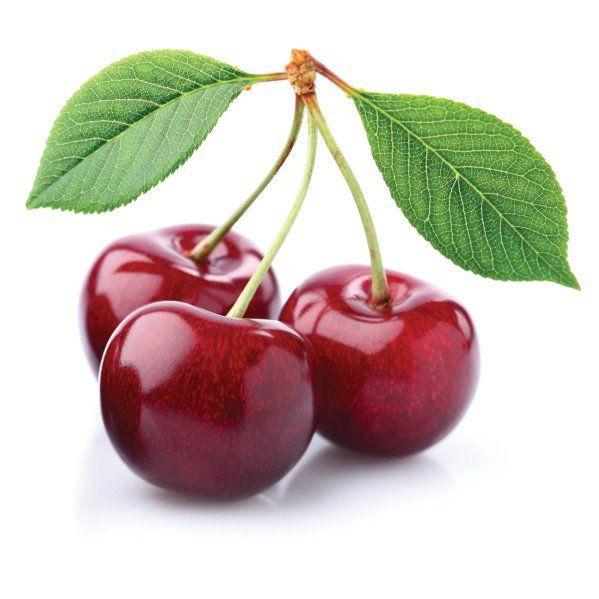Czereśnia - Prunus avium 'Kordia'