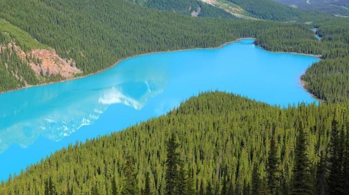 Lake Peyto i Banff National Park, Canada