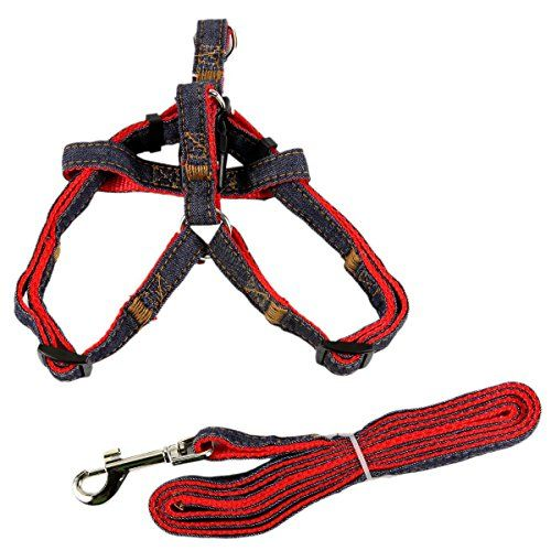 17 Best Images About Dog Collars Amp Leashes On Pinterest