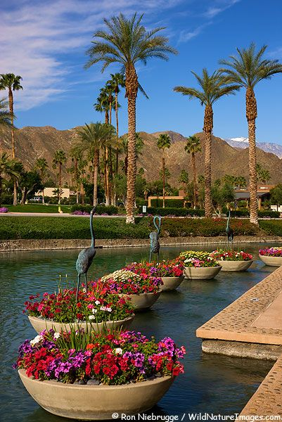 The River, Rancho Mirage, CA Shopping Area and great restaurants!