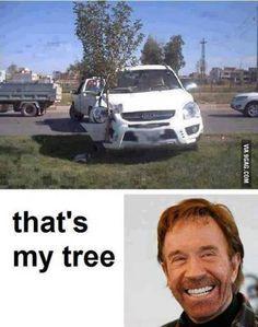 Chuck Norris planting trees