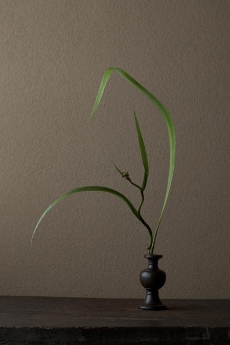 Kawase Toshiro (b,1948)- Ikebana, I