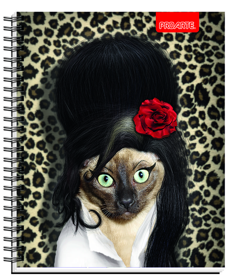 #Pets #Rocks #cuadernos #Notebooks #school #supplies Back to school #PROARTE #pop #Back to black #PetsRock  Notebooks Proarte license Pets Rock 2014. This line of notebooks is known Artists, singers and actors that happen to become pets. They are very funny. Meet Pets Rocks in all the best bookstores in Chile and Wallmart and Jumbo Supermarkets.