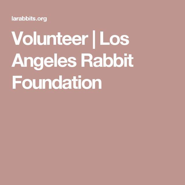 Volunteer  |  Los Angeles Rabbit Foundation