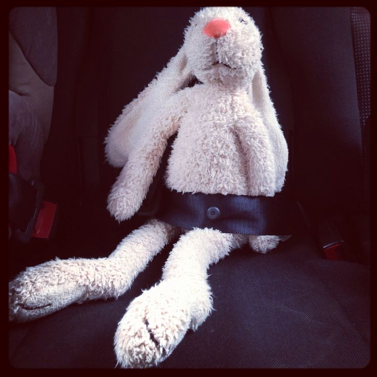 L's rabbit in the back seat