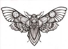 "Awesome ""deaths head"" hawk moth tattoo design"