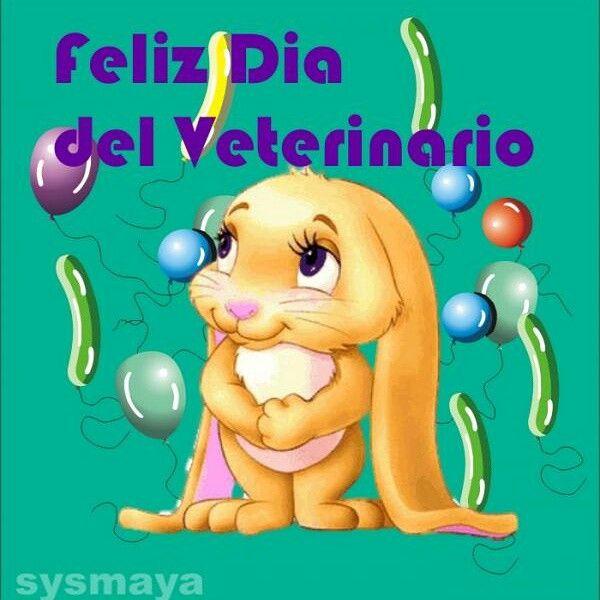 10 de Mayo: dia del veterinario. Feliz dia les desea Luna!!!!!