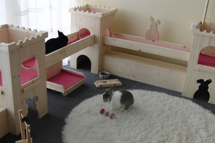 123 best images about for rabbits pour les lapins on for Cage exterieur pour lapin