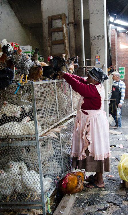 chicken vendor durban, market