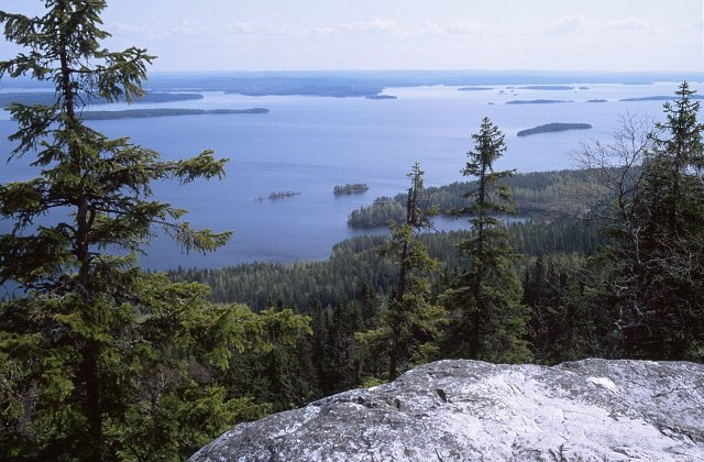 Koli, Eastern Finland. This is where you experience the purest Finnish nature. It has inspired many of our artists through many decades.