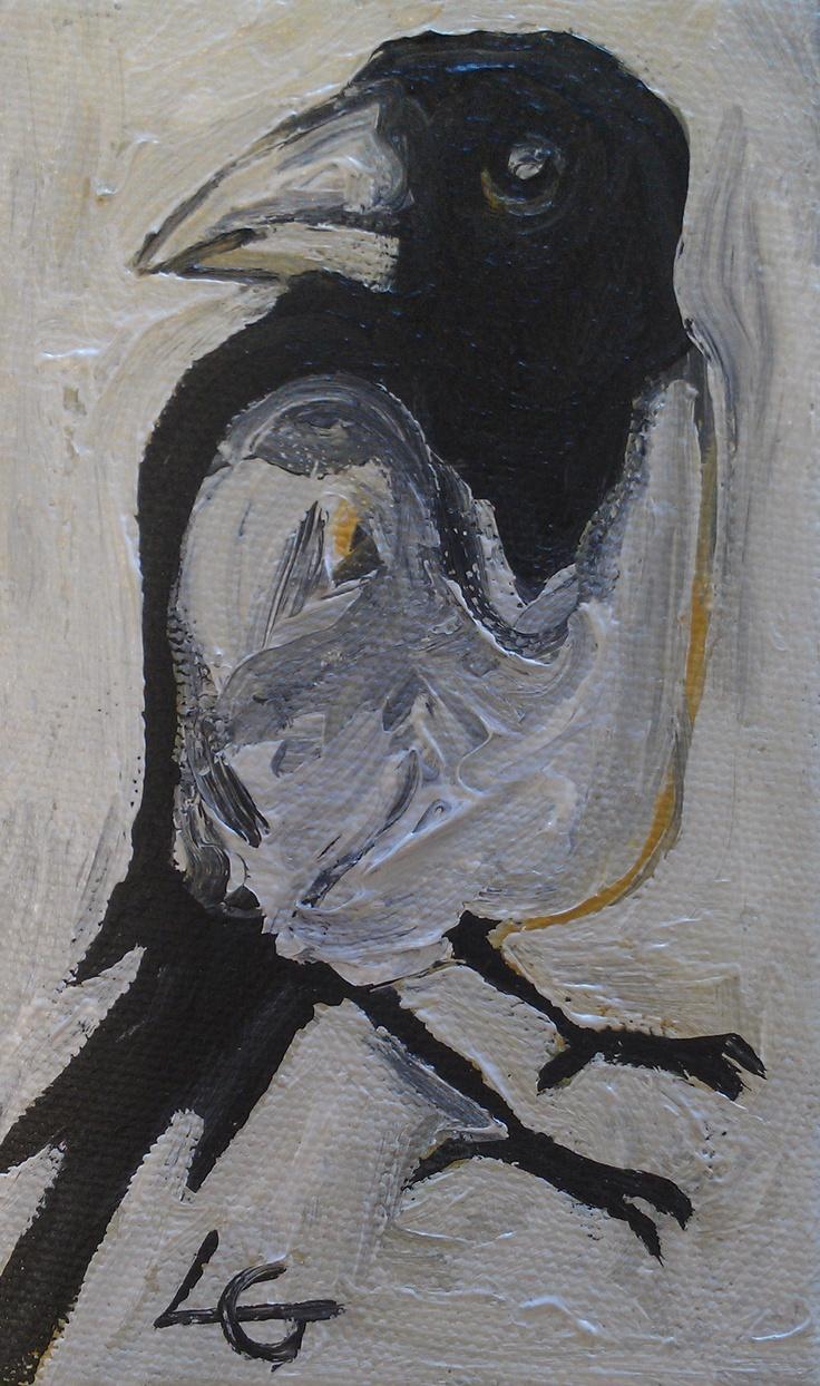 'Magpie VII'