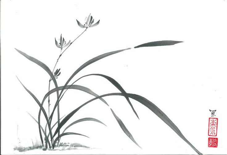 Wild Orchid in Japanese style sumi-e