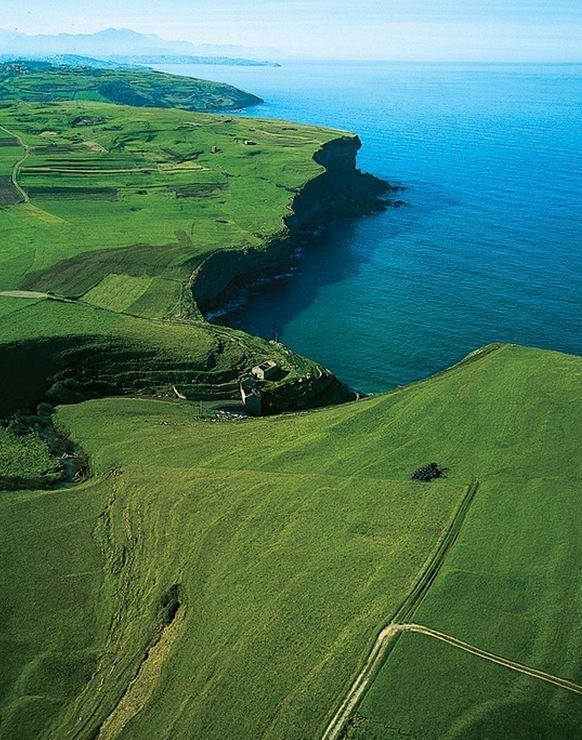 Galicia,Spain....Green green gras of home