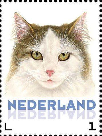 Stamp: Domestic Cat (Felis silvestris catus) (Netherlands - Personalized stamps) (Cats, Francine van Westering) Col:NL 2015-080