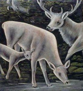 La famille des cerfs au point d eau - (Niko Pirosmani)