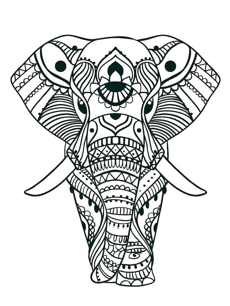 Elephant Color Pages Print Elephant Coloring Page Coloring Baby